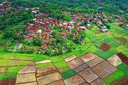 UKM sebagai Penggerak Ekonomi Pedesaan